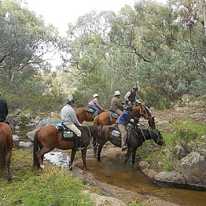 Crossing Reedy Creek on Easter Ride, photo from Sally Toms